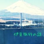 年明け早々伊豆旅行~④遊覧船でとんびとカモメの乱舞を見た