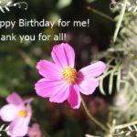 今年も無事に誕生日を迎えました~生きてこられて支えていただいてありがとう